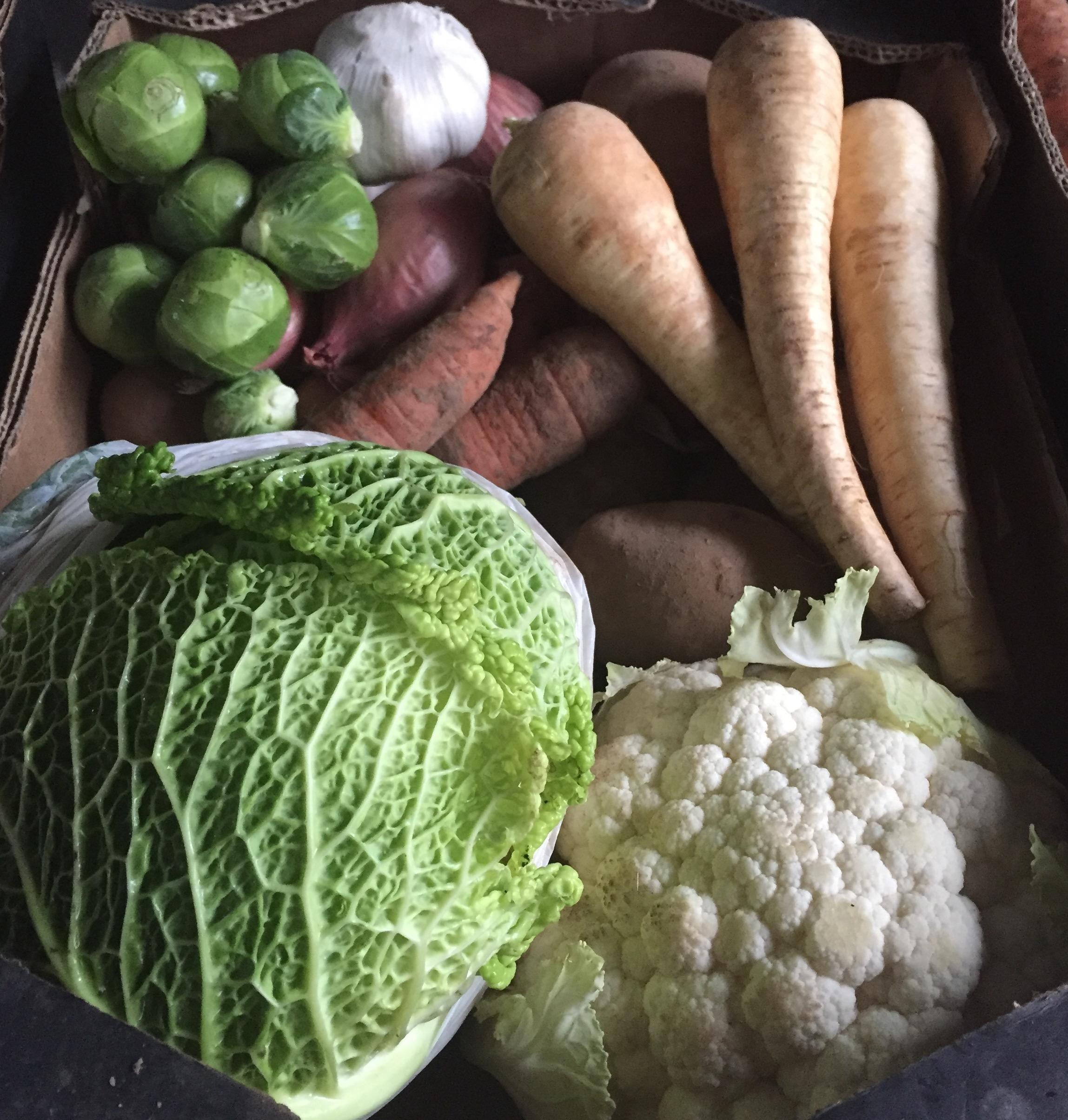 Carmarthen organic veg